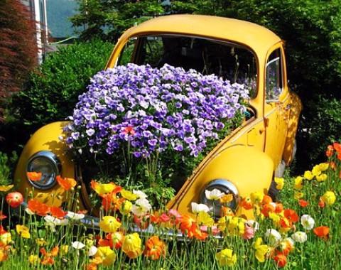 Клумба автомобиль фото