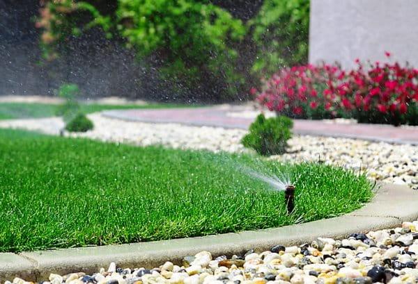 автоматический полив растений фото