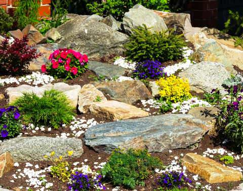 скалистый сад