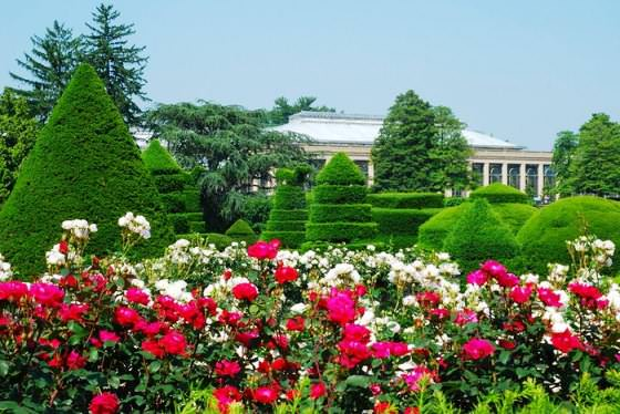 Du Pont Gardens фото