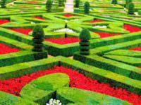 Парк в Версале фото