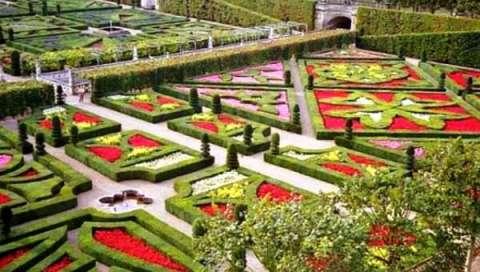 Регулярный сад. Фото 3
