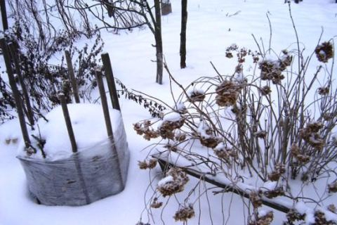 Утепление цветника на зиму