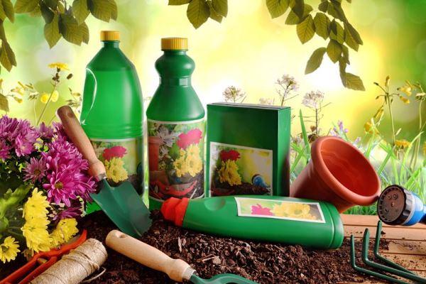 Какими удобрениями и когда подкармливать садовые растения?
